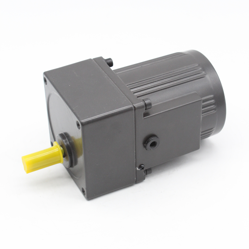 80mm AC spur gear motor