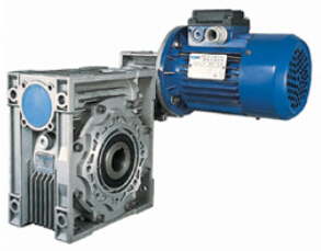 DRW series AC worm gear motor